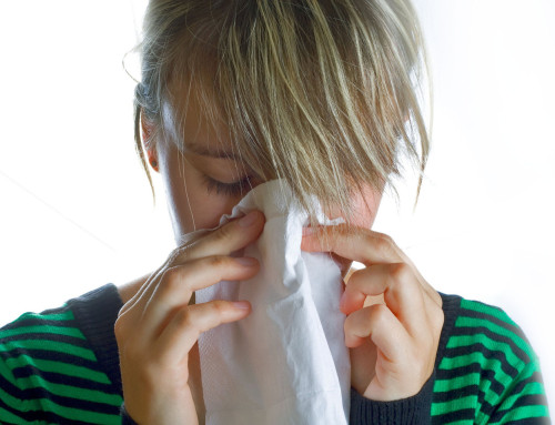 How To Prevent Allergies this Spring